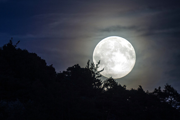 Landscape Moonlighting: Why It's Always in Style